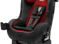 Recaro Roadster XL vs Roadster Comparison : The Similarities and Differences of Two Version of Recaro Roadster